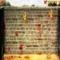 Cat-Bat - Gioco Arcade