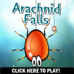Arachnid Falls - Gioco Azione